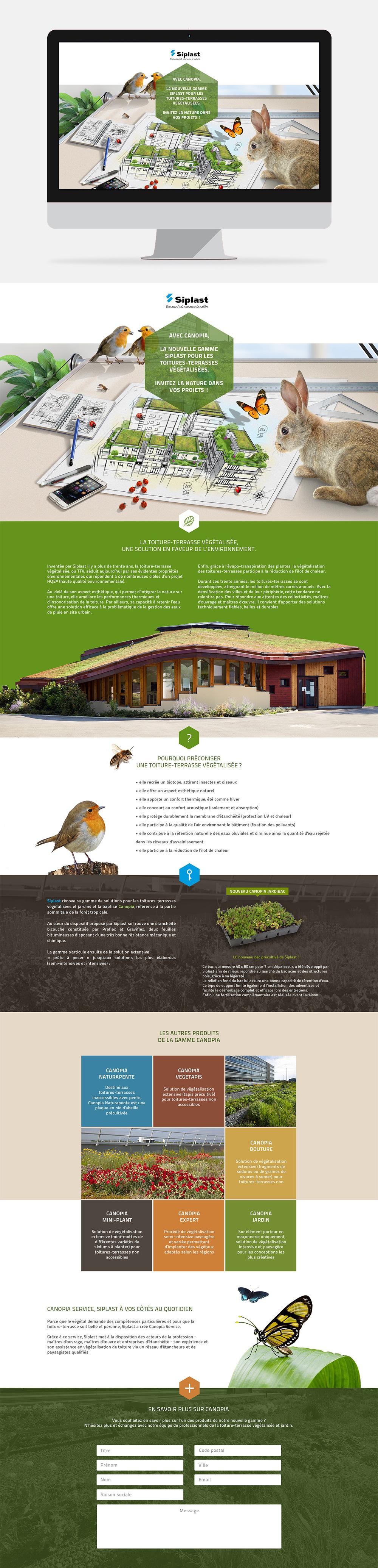 Landing page toitures-terrasses végétalisées